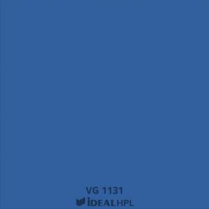 VG 1131